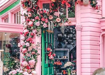 Rosa Haus mit Blumen